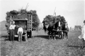 Moving oat sheaves from the field