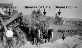 Treshing Oats